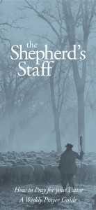 The Shepherd's Staff cover photograph of a shepherd looking over his sheep. Prayers for your pastor.